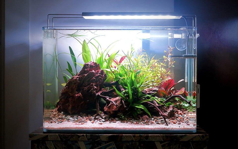 Aquascape Style 30 Liter Aquarium Home Aquarium