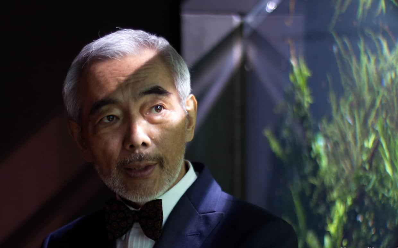Takashi Amano acquari: natura e design