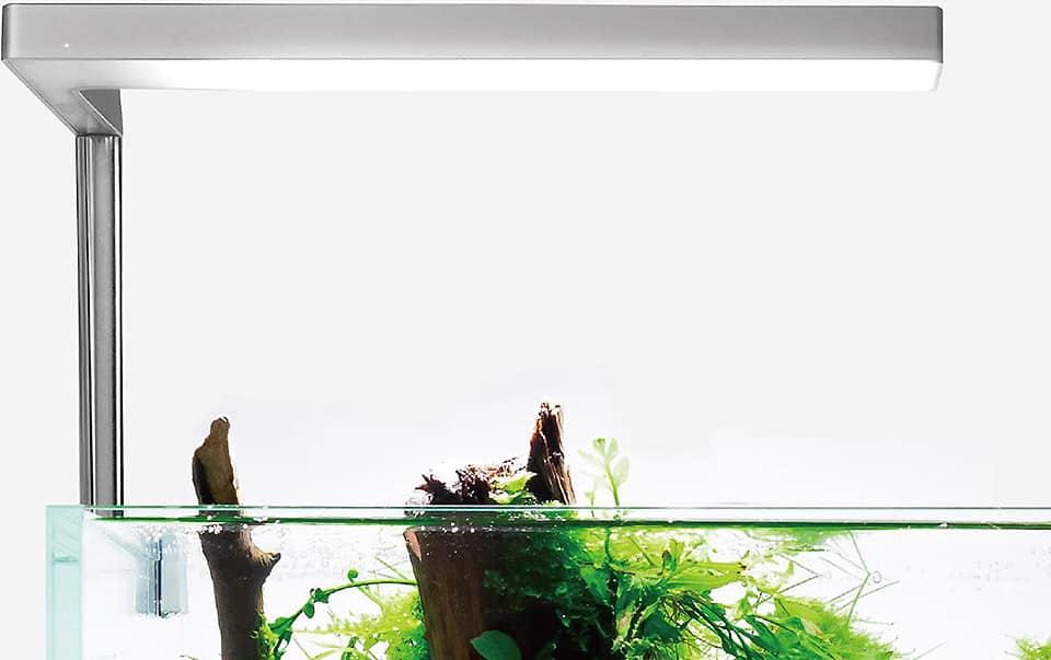 Luce Led per acquario
