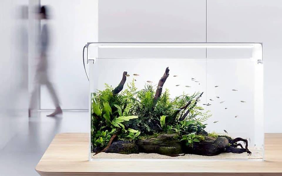 Illuminazione per acquario di Design