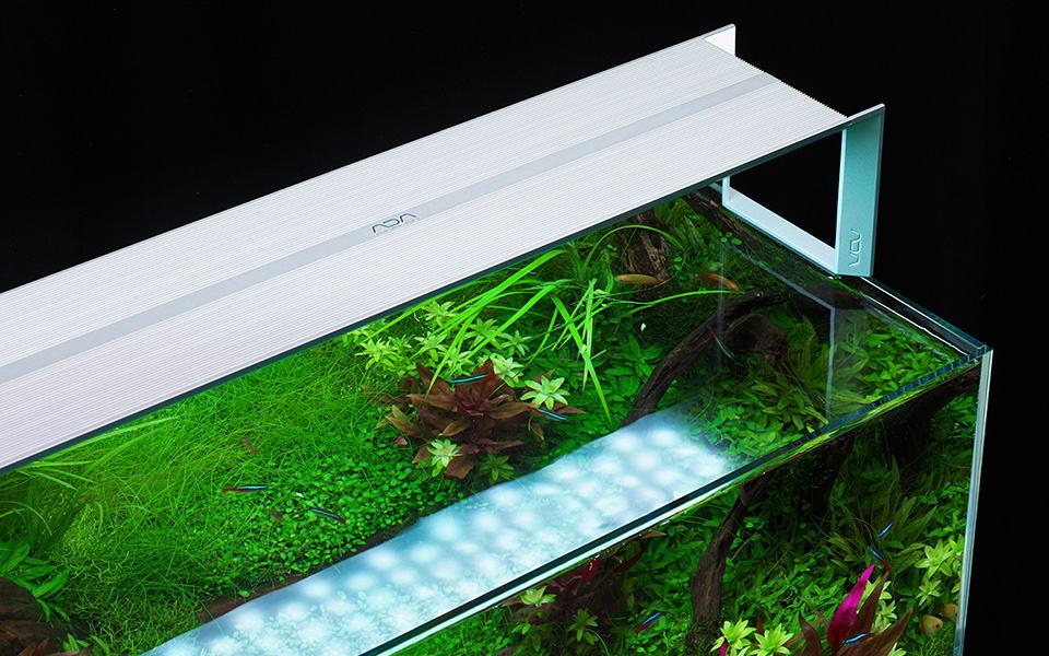 Plafoniera per acquario naturale