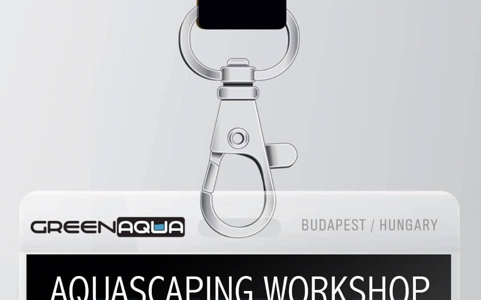 Workshop allo shop Green Aqua