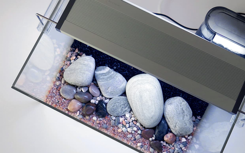 Design acquario