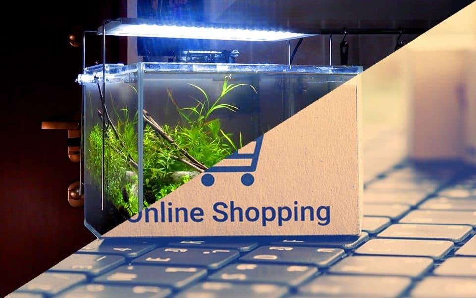 Acquari online