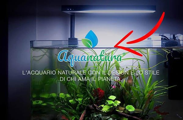 Aquanatura web