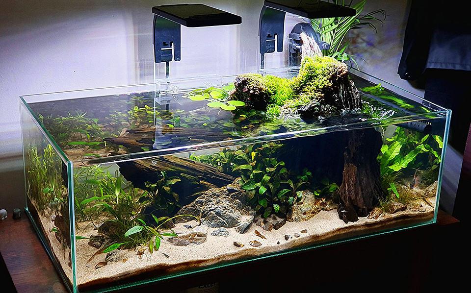 Shallow tank